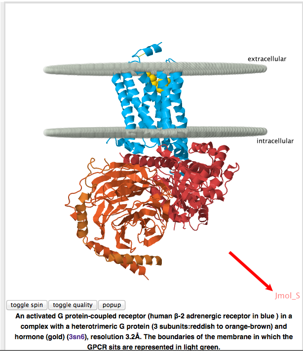 Image:Making image of GPCR page with Jmol S shown.png
