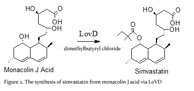 Buy Simvastatin