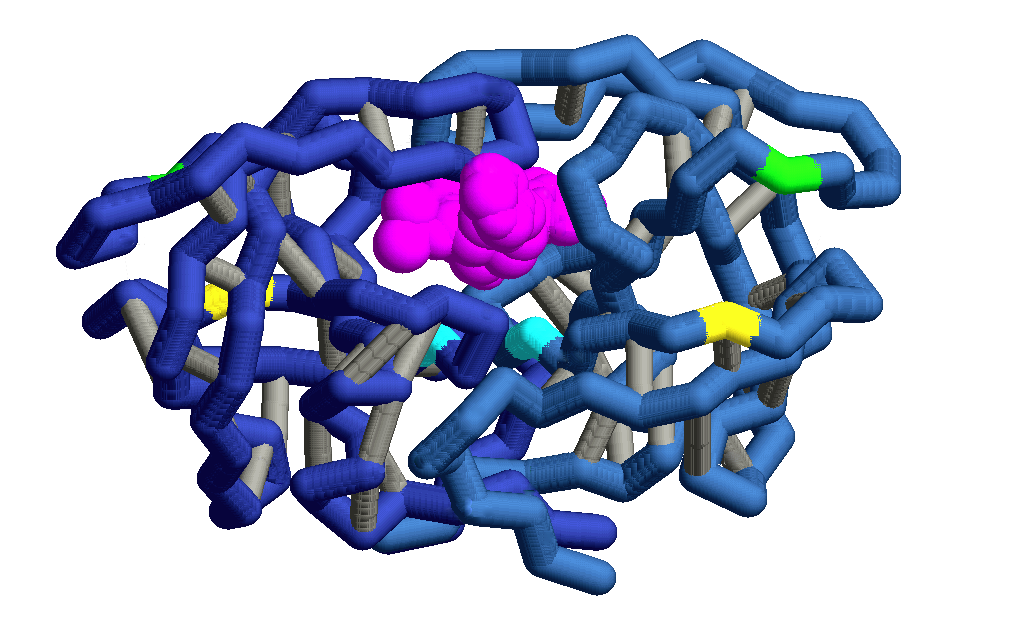 Image:HIV Protease 2.png