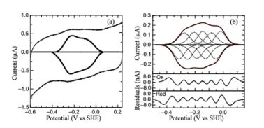 PFV of S. oneidensis ccNiR (a) Typical signal on a graphite electrode. (b) Baselinesubtracted non-turnover voltammogram