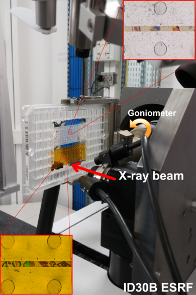 Setup mounted for diffraction experiments at the ID30B beamline of the ESRF with two microchips (Kapton and Mylar) hold in a standard crystallization microplate mount in the plate-gripper goniometer head. Insert are images of thaumatin crystals.
